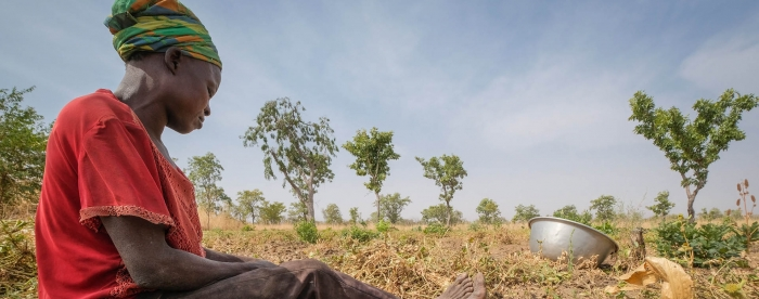 SUB: A farmer sits near a collection of groundnuts near Chiana, Ghana. Photo by A. Fassio/CIFOR