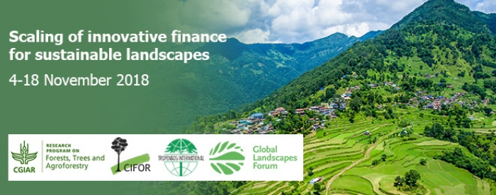 e-Dialogue: Scaling of innovative finance for sustainable landscapes